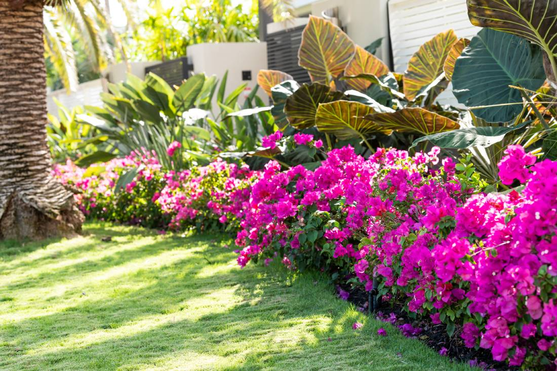 How to Pick a Landscaping Company for Your Condo or Homeowner Association