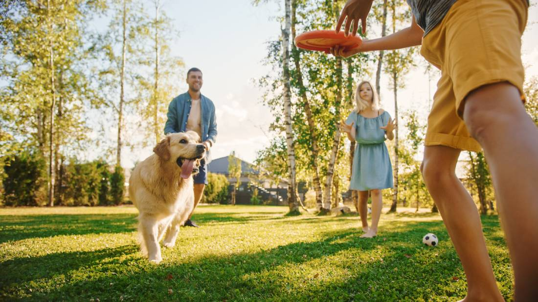 7 Tips for Making Your Association Pet-Friendly